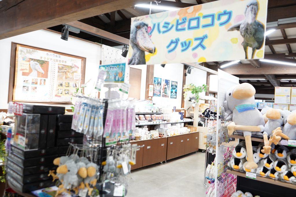 掛川花鳥園のお土産売り場