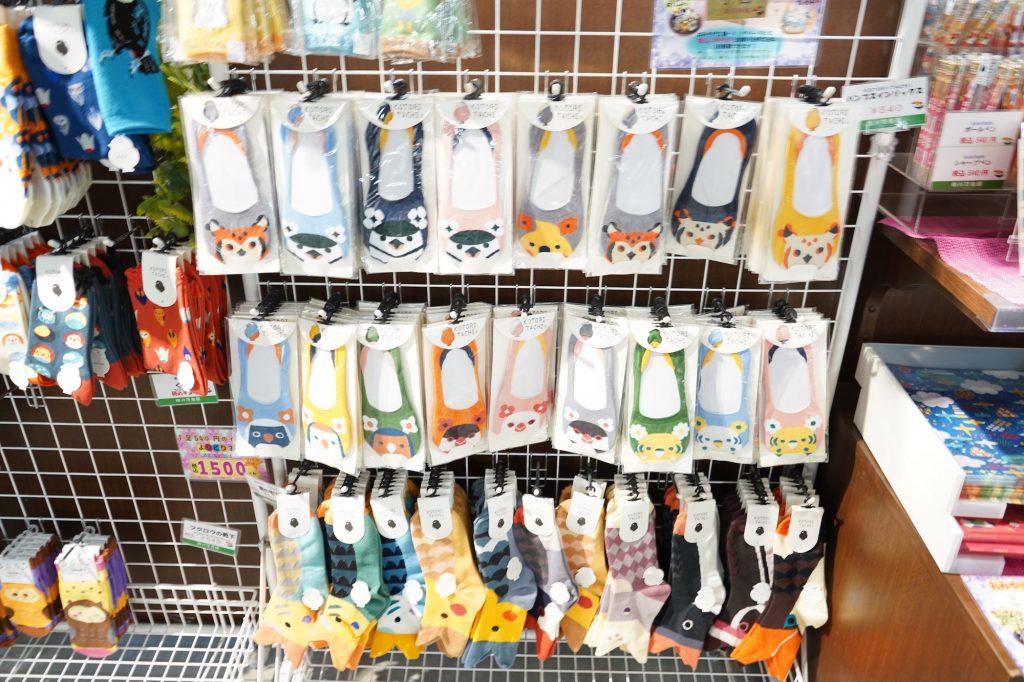 掛川花鳥園で買える鳥の靴下